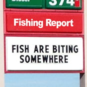 Fishing report button